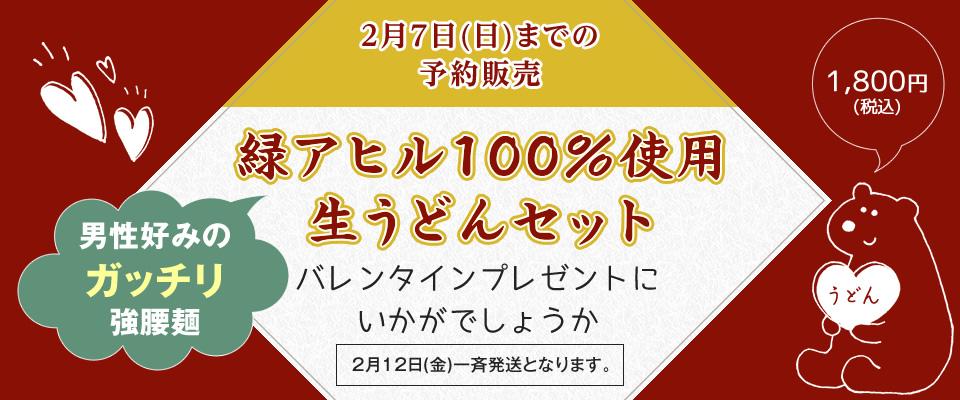 緑アヒル 100%使用生うどんセット